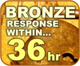 Bronze Maintenance